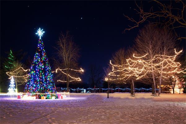 谁来点亮圣诞树顶那颗星1