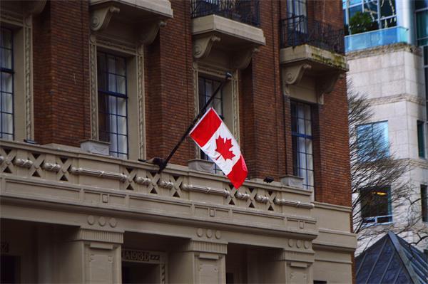 中国在加拿大的投资减少一半1