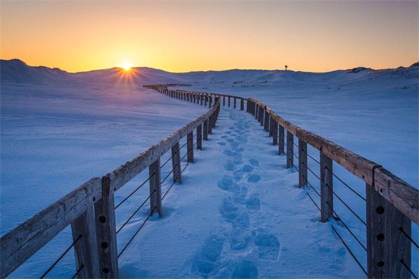 多伦多的严寒酷雪你有没有看腻了?1