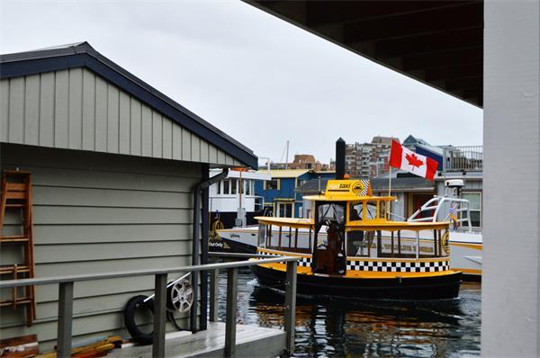 加拿大移民项目紧锣密鼓地进行3