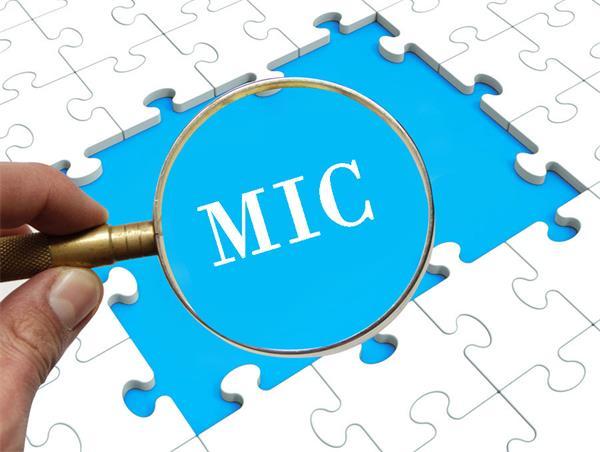 MIC,一种私人抵押贷款的投资3