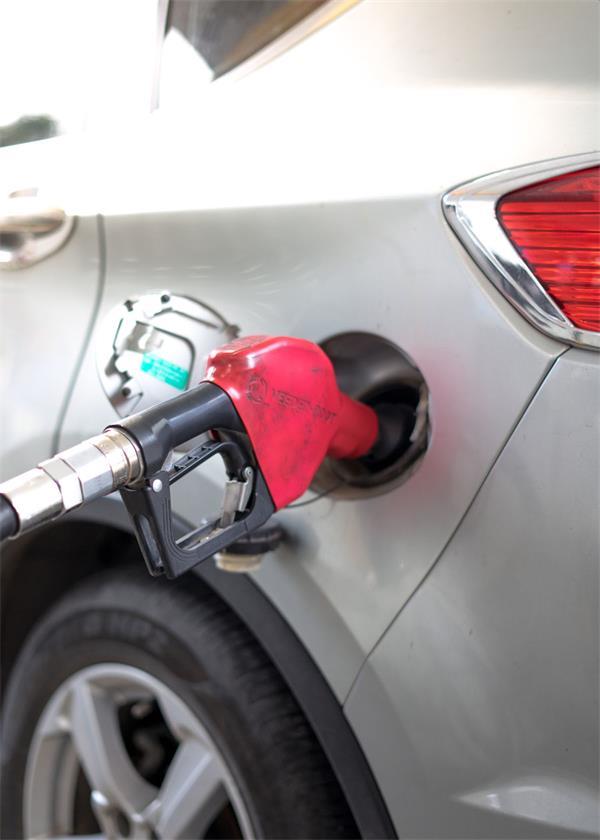 又是愚人节Joke?碳税政策正式生效3