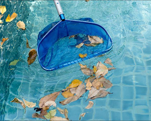 【收藏】千万别等气温高了再打开你的泳池3
