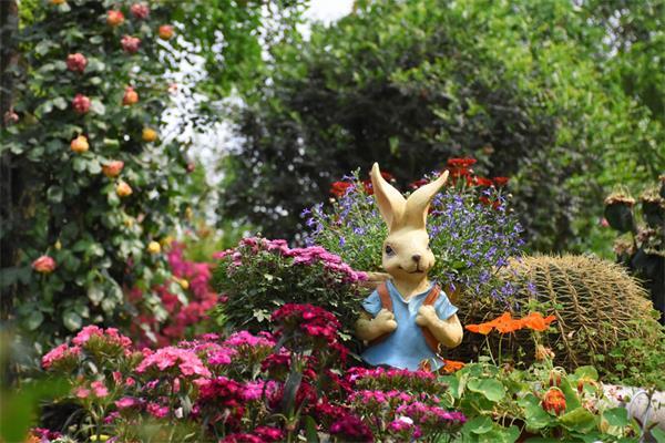 【收藏】让鲜花开满你的庭院1