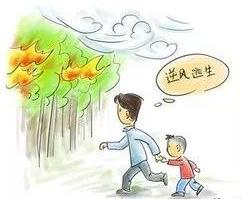 【收藏】野外火灾如何自救6