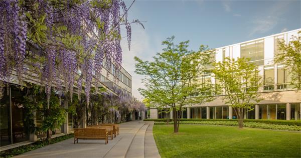 2019年加拿大最佳商学院排名9