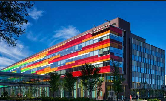 2019年加拿大最佳教育类大学排名10
