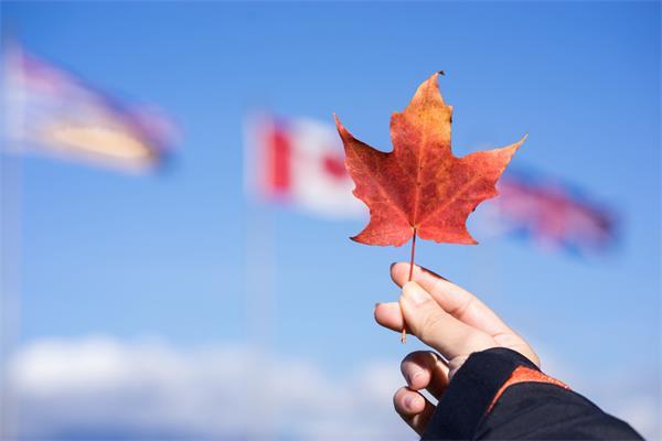 一大波福利来袭,养娃就来加拿大!7
