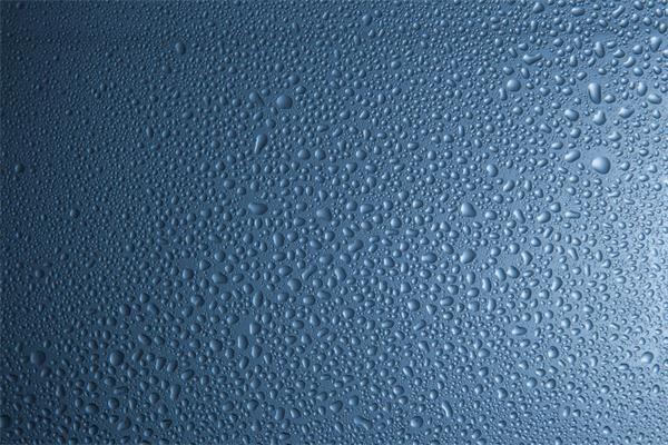 连续阴雨,小心引发墙壁霉菌生长6