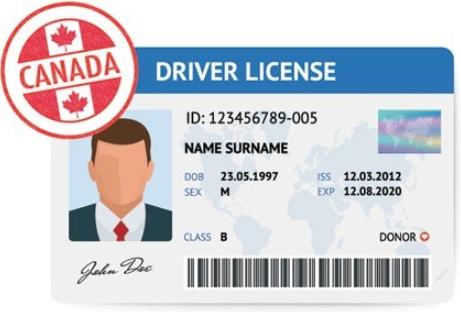 在加拿大获得驾照怎么这么难?2
