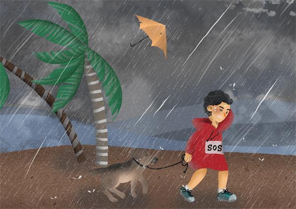 【收藏】飓风来啦!我们应该怎么做?9