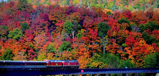 震撼!加拿大的秋天这么过最美!2