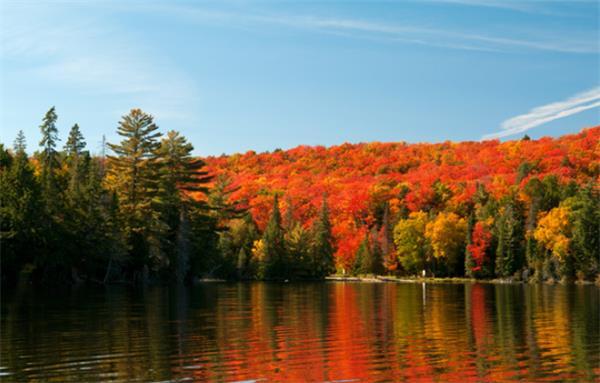 震撼!加拿大的秋天这么过最美!1