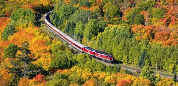震撼!加拿大的秋天这么过最美!4