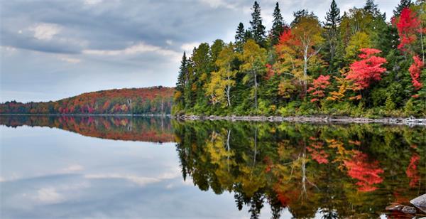 震撼!加拿大的秋天这么过最美!8