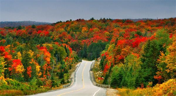 震撼!加拿大的秋天这么过最美!9