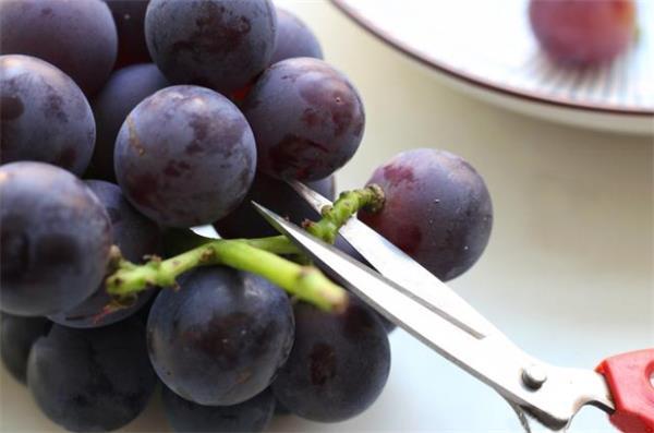 【收藏】纯天然葡萄清洗法4
