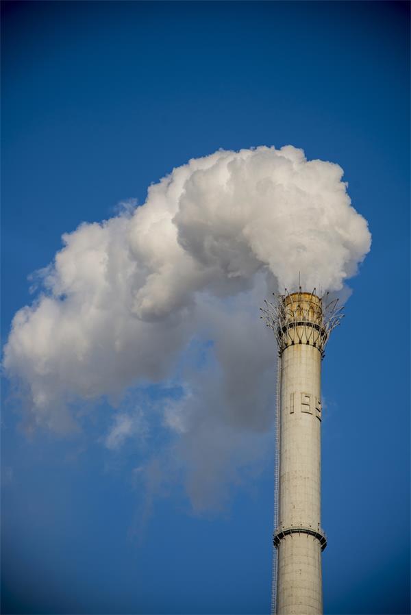 震憾!加拿大人聚集全国呼吁政府应对气候变化4