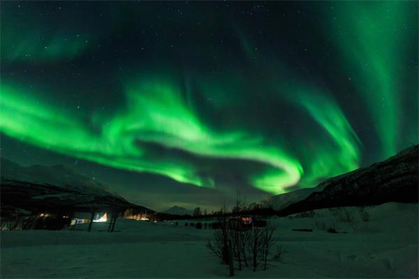 追光之旅,加拿大极光和北欧的有何不同?1