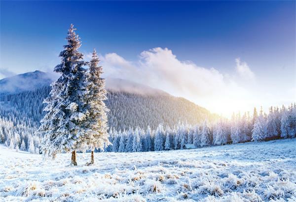 如何应付大多地区入冬以来的第一场雪!3
