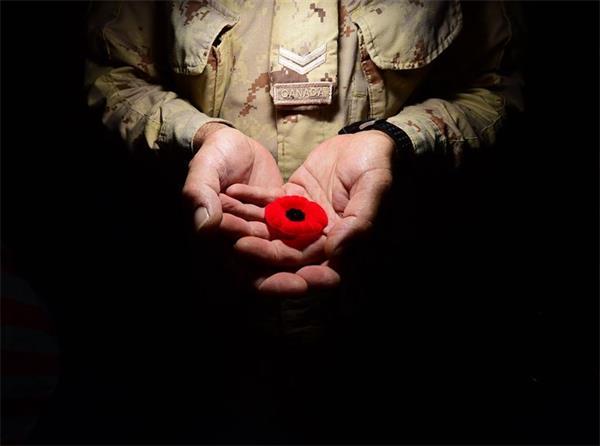 【不能忘却的纪念】11月11日,加拿大军人纪念日2