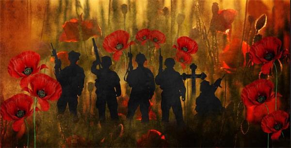 【不能忘却的纪念】11月11日,加拿大军人纪念日4