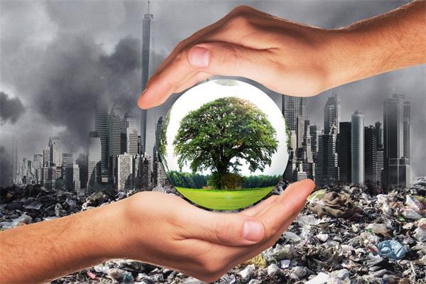 【最新】特鲁多政府发布2020年碳税补贴标准4