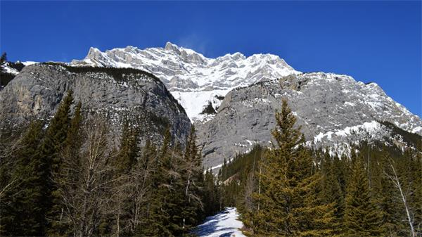 上热搜了!加拿大冬季这几处美景惊艳了全世界1