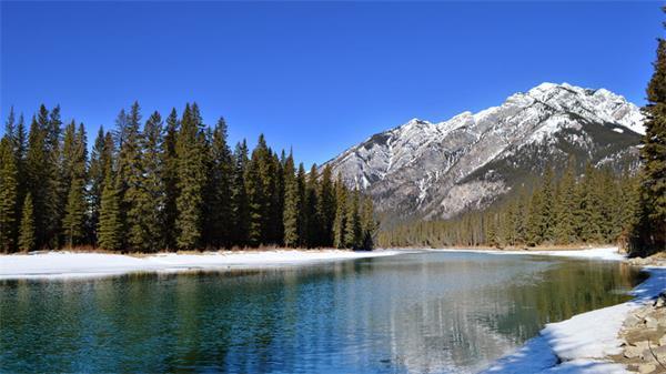 加拿大成为鼠年春节出境游最佳目的地之一3