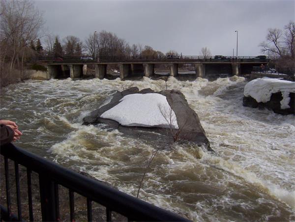 可怕!如何应对?多伦多狂风肆虐!连续降雨!有洪水、停电风险!7