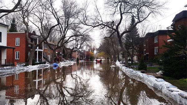 可怕!如何应对?多伦多狂风肆虐!连续降雨!有洪水、停电风险!9