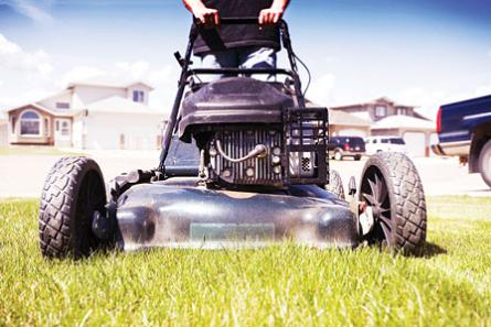 注意!春天来了!你妈叫你收拾草坪呢!1