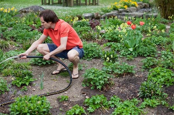 注意!春天来了!你妈叫你收拾草坪呢!8