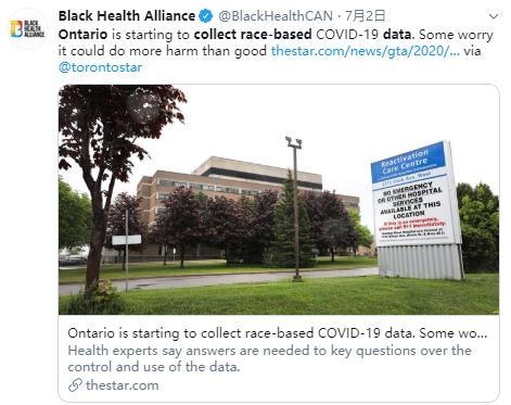 摊上事儿了?多伦多卫生局发布涉种族数据报告8