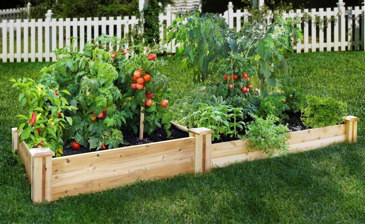 加拿大房产-室内室外-秋季花园-蔬菜种植-ehouse411