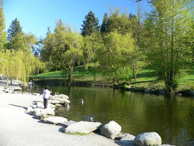 温哥华  共同住房 莱利公园