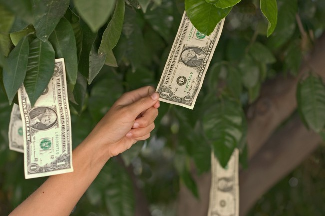 钱 税务居民