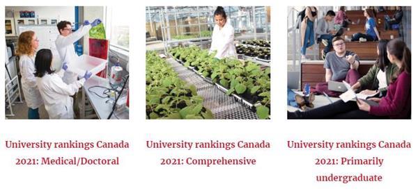 麦克林权威发布!2021年加拿大大学9大热门专业排名5