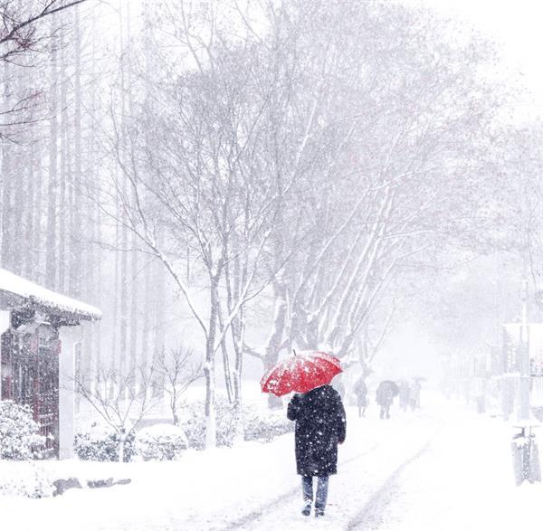 雨雪交加!当心,不及时铲雪将面临高额罚款6