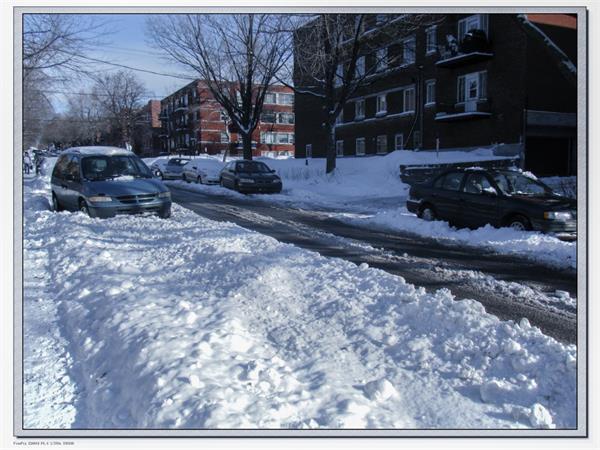 连日降雪大雨!大多伦多地区白色圣诞,业主房屋养护秘笈3