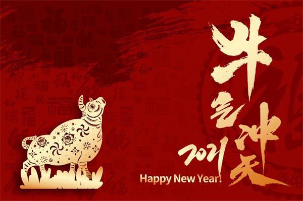 加拿大时讯祝您 HAPPY NEW YEAR!3