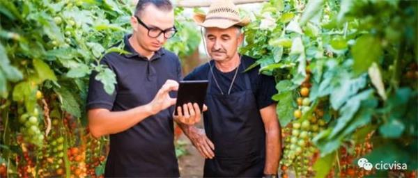 最新移民资讯!加拿大农业食品移民试点项目火热进行中!2
