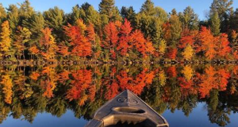 太惊艳了!加拿大金秋9大赏枫网红打卡圣地1