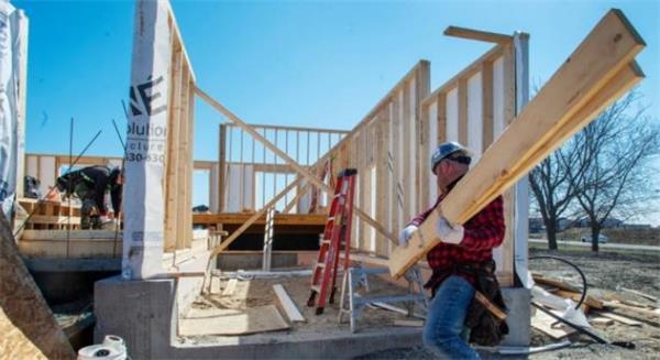 囤木材!北美地区木材价格暴跌!对房产市场有何影响?1