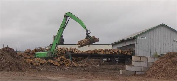 囤木材!北美地区木材价格暴跌!对房产市场有何影响?4