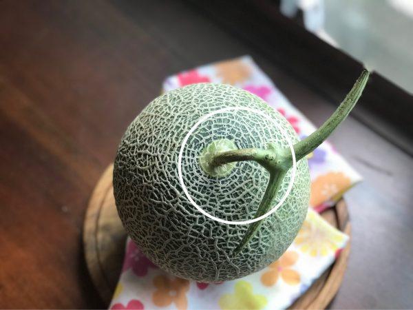 水果也分公母?加拿大秋季瓜果挑选秘诀! 3