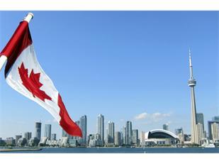 放弃美国!全球人才正向北移至加拿大